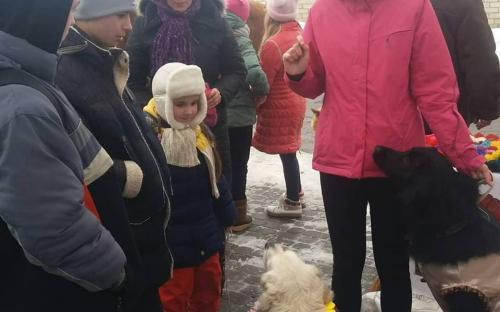 Приютские питомцы дарили любовь жителям Хорошево