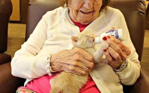 В США объединили дом престарелых и приют для животных
