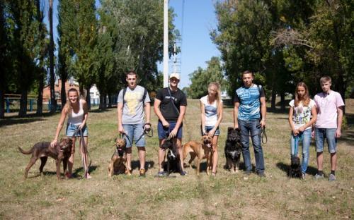 30 августа 2015 в приюте был день открытых дверей для всех желающих выгулять собачку