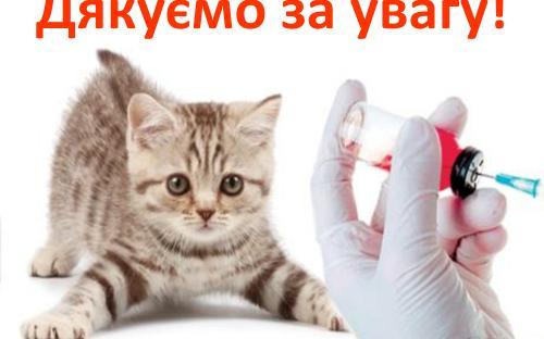 Распространение и видовой состав возбудителей дерматомикозов мелких домашних животных в. Харькове