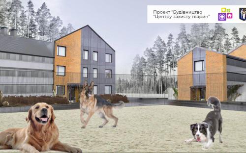 Строительство Центра защиты животных
