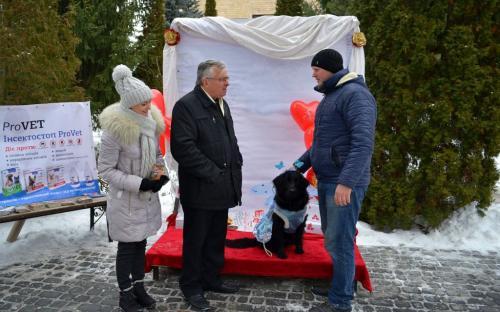 Лохматая команда из Центра обращения с животными праздновала День Святого Валентина в зооветеринарной академии