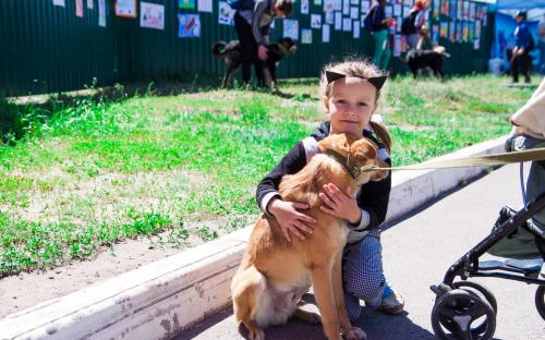 Самый масштабный в Украине пробег людей вместе с собаками