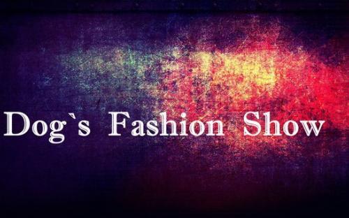 Центр обращения с животными приглашает всех на свое костюмированное шоу Dog`s Fashion Show