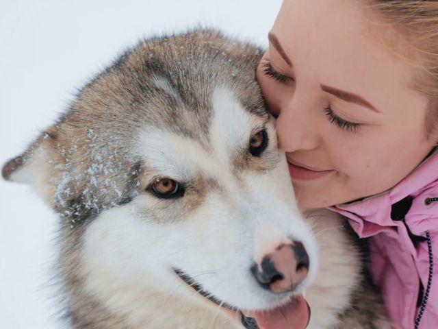 Что думают о нас собаки, когда мы улыбаемся – ученые выяснили